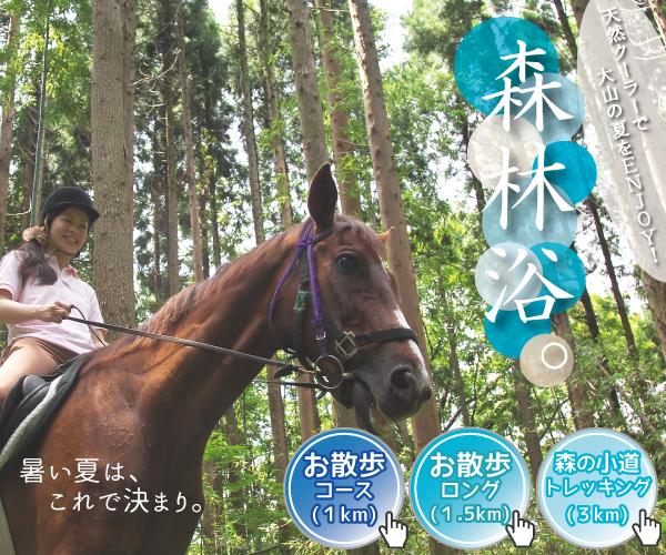 乗馬で森林浴。
