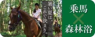 森林浴×乗馬